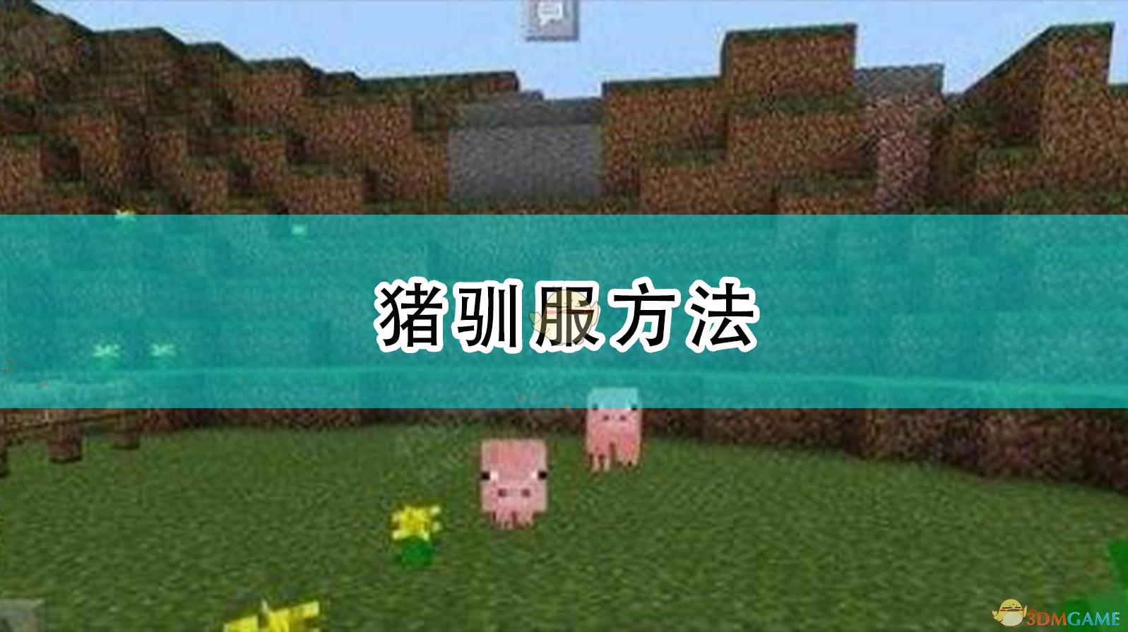 《我的世界》豬馴服方法